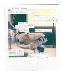 Joshua Preston Polaroid - Curios 2